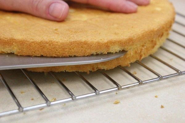 8-meo-lam-banh-cuc-quan-trong-cho-nguoi-moi-bat-dau-6 mẹo làm bánh 8 mẹo làm bánh cực quan trọng cho người mới bắt đầu 8 meo lam banh cuc quan trong cho nguoi moi bat dau 6