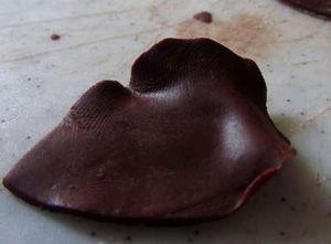 huong-dan-lam-hoa-hong-socola-trang-tri-banh-5 cách làm hoa hồng socola Hướng dẫn cách làm hoa hồng socola trang trí bánh huong dan lam hoa hong socola trang tri banh 5