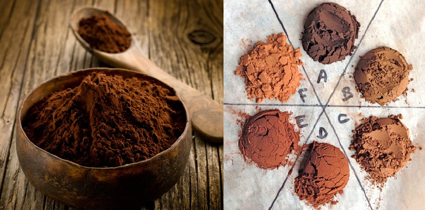 Mẹo vặt khi chọn socola cho ngày Valentine 7 socola cho ngày valentine Những mẹo vặt đơn giản khi chọn socola cho ngày Valentine socola cho valentine 123