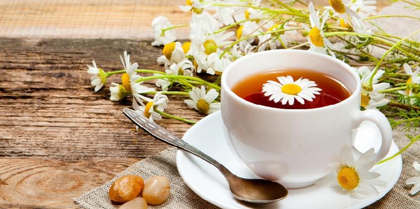 Cách pha trà hoa cúc 9 cách pha trà hoa cúc Trà hoa cúc thơm dịu dàng cho một chiều cuối đông cach pha tra hoa cuc mat ong cho mot chieu cuoi dong 11