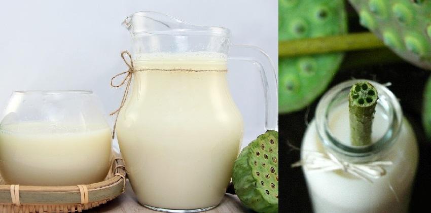 cách làm sữa hạt sen 11 cách làm sữa hạt sen Cách chế biến sữa hạt sen đầy dinh dưỡng giải nhiệt mùa hè cach lam sua hat sen thom ngon bo duong cho ca nha 51