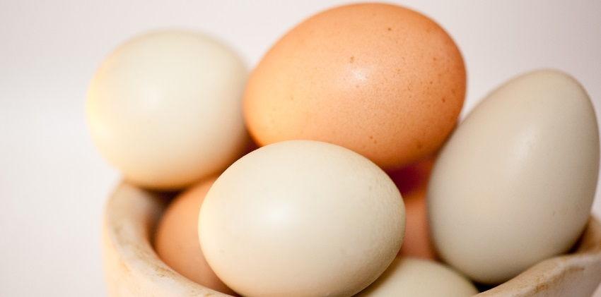 bí quyết chọn mua trứng gà trong làm bánh 7 bí quyết chọn mua trứng gà trong làm bánh Bí quyết chọn mua trứng gà trong làm bánh bi quyet chon mua trung ga trong lam banh cuc ky huu ichbi quyet chon mua trung ga trong lam banh 7