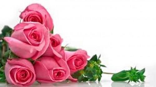 quà tặng 20-10 1 quà tặng 20-10 Quà tặng 20-10 dành cho người phụ nữ đặc biệt của bạn qua tang 20 10 danh cho nguoi phu nu dac biet cua ban 1 e1476245351222