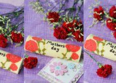 cách làm bánh bông lan cuộn hoa cẩm chướng 7