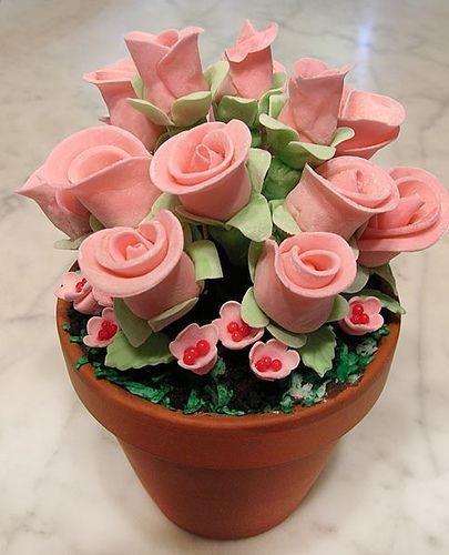 cách làm cakepop hoa hồng 4 cách làm cakepop hoa hồng Mê mẩn với cách làm cakepop hoa hồng tặng mẹ ngày 8/3 me man voi cach lam cakepop hoa hong tang me ngay 83 4