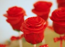 cách làm cakepop hoa hồng 5