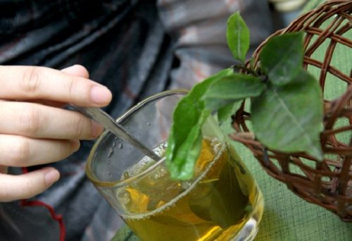cách pha trà xanh ngon 2 cách pha trà xanh ngon Cách pha trà xanh ngon ai cũng làm được cach pha tra xanh ngon cuc don gian ngay tai nha 2