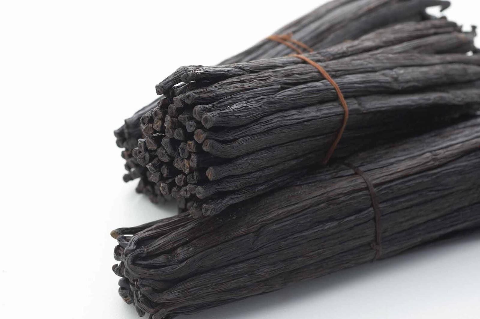 Cách phân biệt các loại vanilla trong làm bánh -2 phân biệt các loại vanilla Phân biệt các loại Vanilla trong làm bánh cach phan biet cac loai vanilla trong lam banh 6