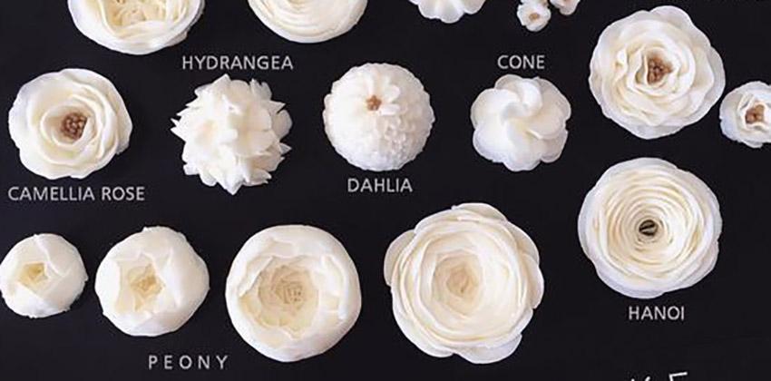 Lưu lại những mẫu hoa kem bơ Hàn Quốc hot nhất không thể bỏ qua-8433  8 mẫu hoa kem bơ Hàn Quốc phổ biến nhất trong trang trí bánh tong hop nhung mau hoa kem bo dep nhat nam 2017 89 1