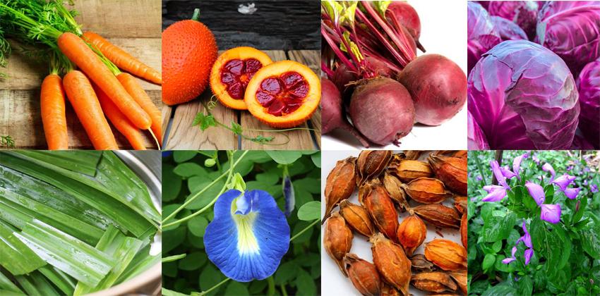 màu thực phẩm từ thiên nhiên Cách tạo màu thực phẩm từ thiên nhiên và một số lưu ý khi sử dụng Untitled 1 3