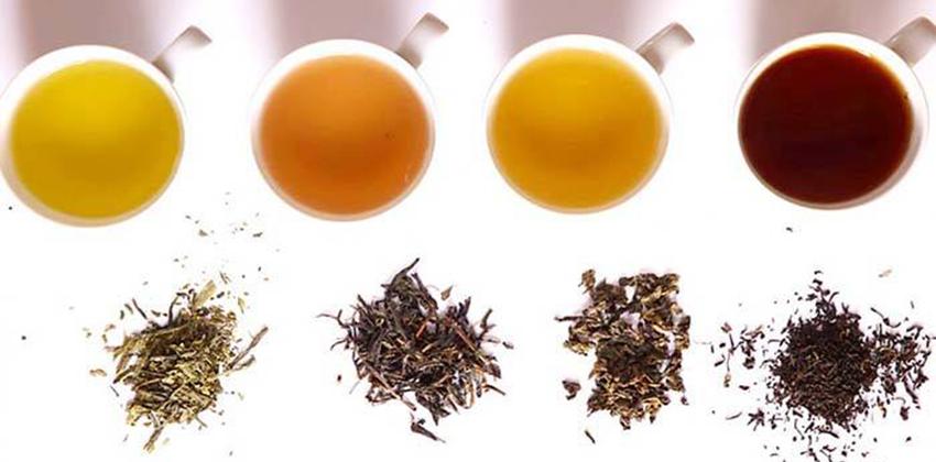 các loại trà để pha trà sữa các loại trà để pha trà sữa Tổng hợp các loại trà để pha trà sữa cơ bản nhất cac loai tra de pha tra su2a