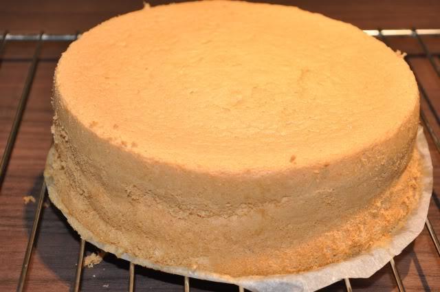 cách làm bánh bông lan bằng bột mì đa dụng cách làm bánh bông lan bằng bột mì đa dụng Cách làm bánh bông lan bằng bột mì đa dụng không cần lò nướng cach lam banh bong lan bang bot mi da dung71