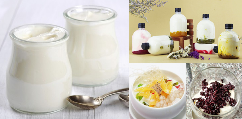cách làm sữa chua ngon cách làm sữa chua ngon Tổng hợp 3 cách làm sữa chua ngon tại nhà cực đơn giản cach lam sua chua ngon 71