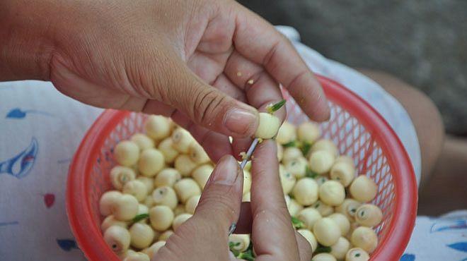 cách nấu chè hạt sen đậu xanh cách nấu chè hạt sen đậu xanh 2 cách nấu chè hạt sen đậu xanh ngon và đơn giản nhất cach nau che hat sen dau xanh 11