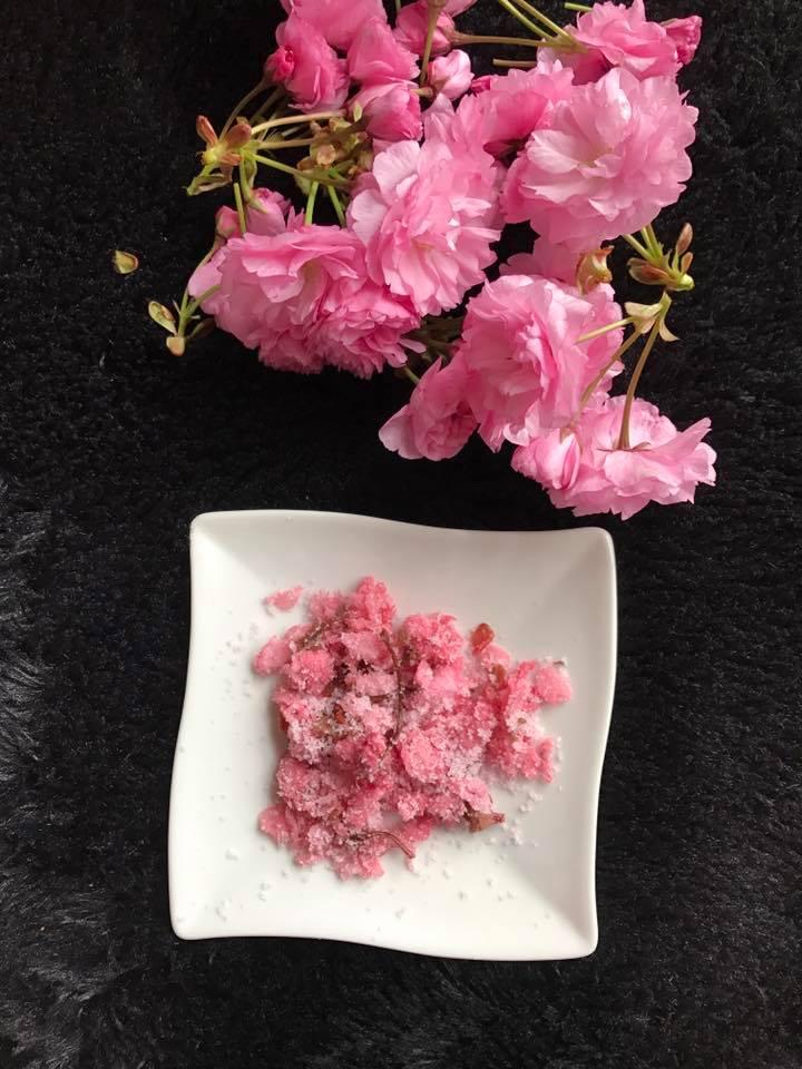 cách làm hoa anh đào muối cách làm hoa anh đào muối Cách làm hoa anh đào muối truyền thống đậm đà hương vị Nhật cach lam hoa anh dao muoi 9 1