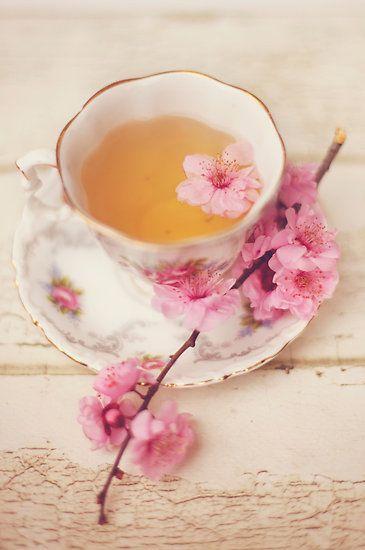 Các loại hoa 2 các loại hoa Các loại hoa trong pha chế đồ uống – Nên sử dụng như nào? cac loai hoa 2