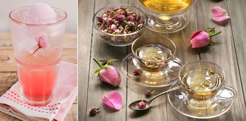 các loại hoa 7 các loại hoa Các loại hoa trong pha chế đồ uống – Nên sử dụng như nào? cac loai hoa 7