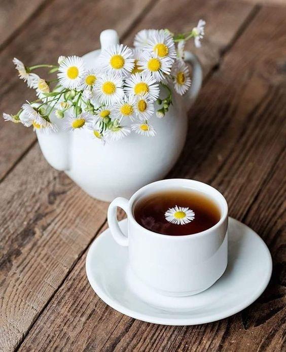 các loại hoa 9 các loại hoa Các loại hoa trong pha chế đồ uống – Nên sử dụng như nào? cac loai hoa 9