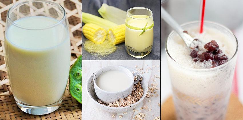 công thức làm sữa hạt 66 công thức làm sữa hạt Công thức làm sữa hạt nhanh gọn lẹ, uống vào thích mê cong thuc lam sua hat 66