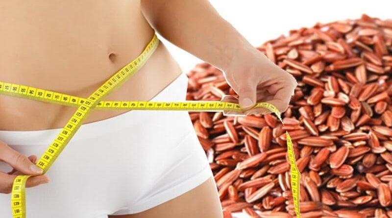 ăn gạo lứt giúp giảm cân tốt hơn và nhanh chóng  ăn gạo lứt giảm cân Chỉ ăn gạo lứt giảm cân về dáng cực nhanh an gao lut giam can