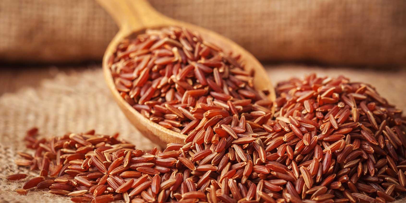 gạo lứt giá bao nhiêu  gạo lứt giá bao nhiêu Mua gạo lứt giá bao nhiêu thì hợp lí? gao lut gia bao nhieu