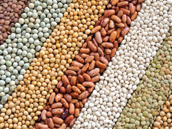 ngũ cốc nguyên chất ngũ cốc nguyên chất Tìm hiểu về ngũ cốc nguyên chất và các lợi ích tuyệt vời cho sức khỏe ngu coc dinh duong cho ba bau 02 e1564288737271