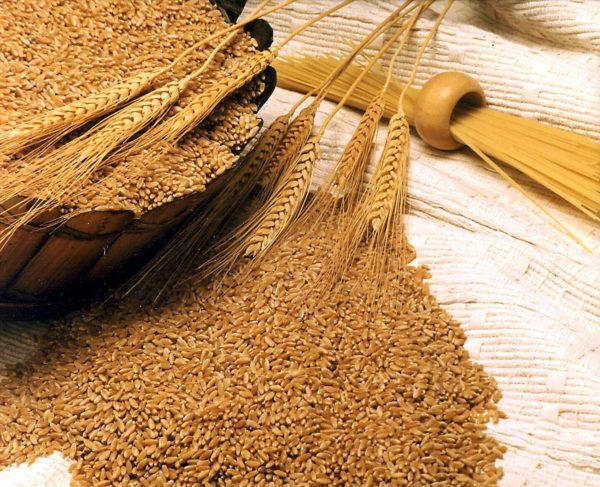 ngũ cốc nguyên chất ngũ cốc nguyên chất Tìm hiểu về ngũ cốc nguyên chất và các lợi ích tuyệt vời cho sức khỏe ngu coc nguyen chat e1564539168170