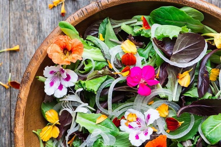 hoa ăn được công dụng và cách bảo quản hoa ăn được Công dụng và cách bảo quản hoa ăn được – hoa pansy Spring salad with edible flowers 7407 April 11 2017 3