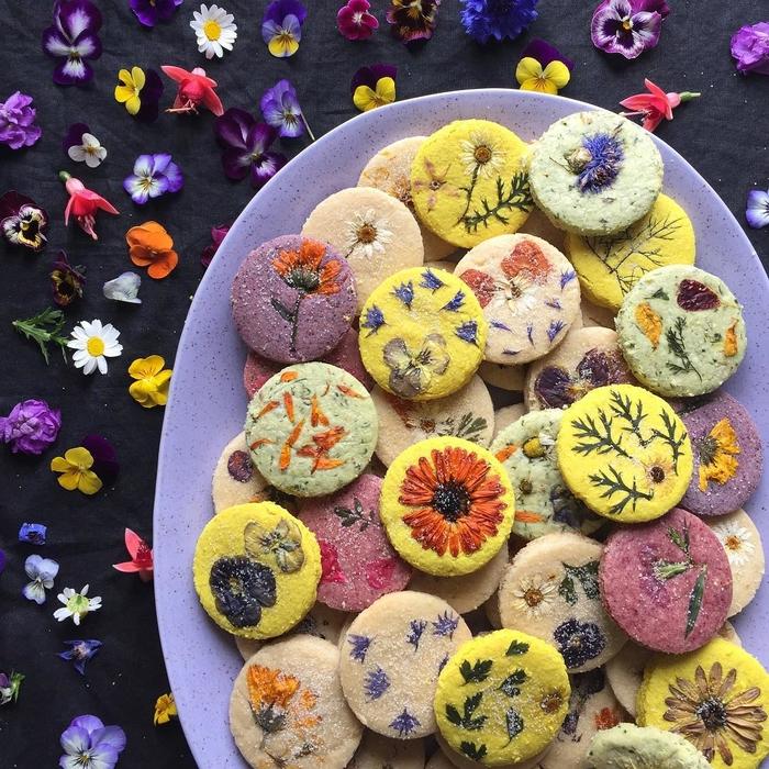 bánh quy hoa công dụng và cách bảo quản hoa ăn được Công dụng và cách bảo quản hoa ăn được – hoa pansy banh quy hoa