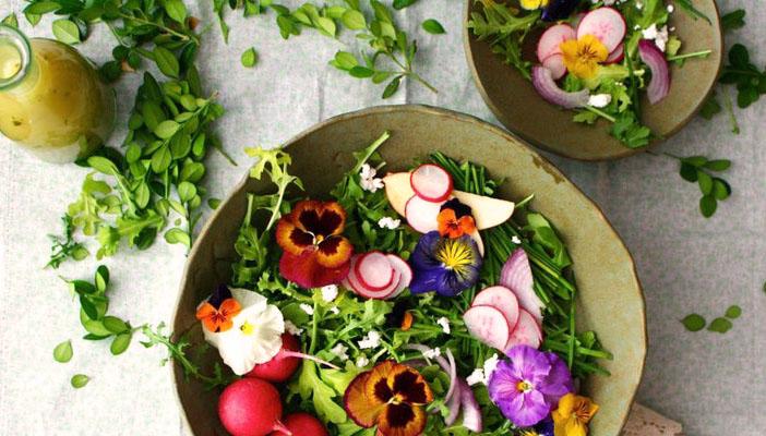 hoa ăn được