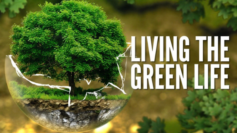 sống xanh Chiến dịch 3S: SỐNG XANH – ĂN SẠCH – UỐNG SÀNH cùng Beemart s   ng xanh 1